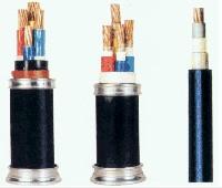 胜华 聚氯乙烯绝缘护套电力电缆 VV